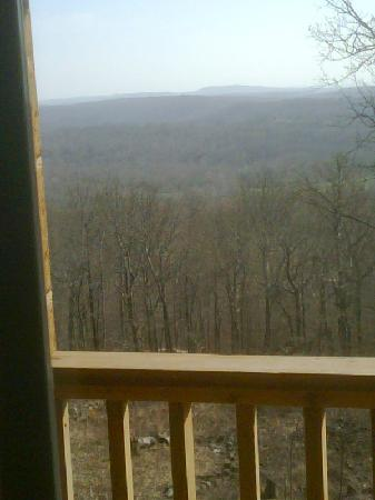 Skyline View Cabins: View from cabin (in really early spring)