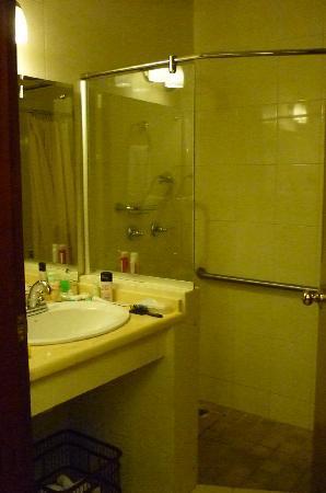 Toscana Inn Hotel: bathroom