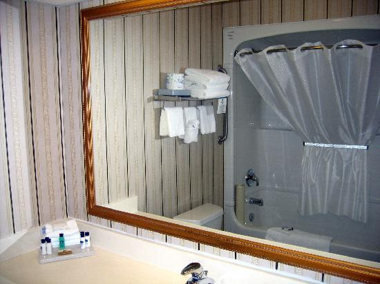 BEST WESTERN PLUS Travel Hotel Toronto Airport: Bathroom