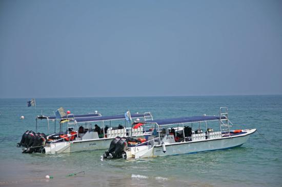 Al Boom Diving: diving boats