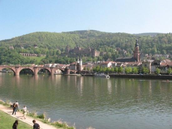 Heidelberg slott: Heidelberg, Baden-Wurttemberg, Germany