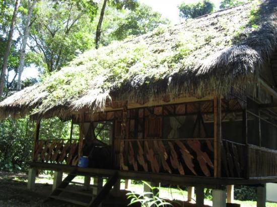 Tena, Ecuador: My cabin... The Star Cabin!