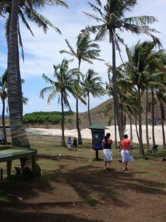 Anakena Beach : lindo lindo