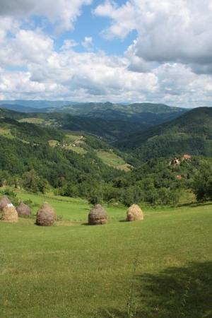 Nacionalni park Tara, Srbija: Pogled iz Solotuše