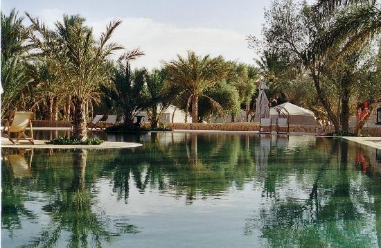 Camp Yadis Ksar Guilane: La piscine