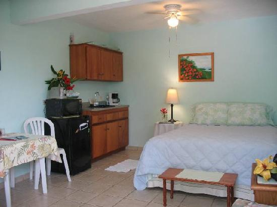 Casa de Kathy: Studio apartment