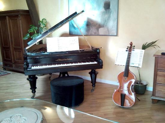 Alchymist Nosticova Palace: Playing my viola da gamba in the Suite
