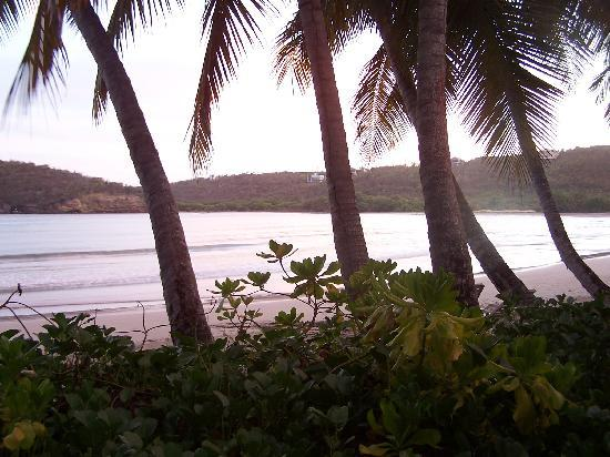 Saint David Parish, Grenada: View from our terrace