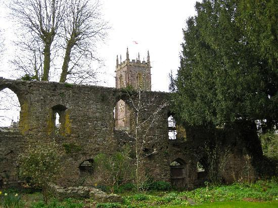 Tiverton Castle: Ruins