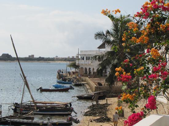 Lamu Island, Kenya: fiori e mare