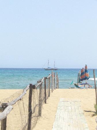 Lido il Solleone: The Beach