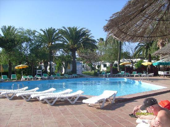 Canary Garden Club: The 2nd big pool