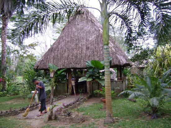 Macaw Bank Jungle Lodge: Palapa dining room