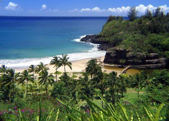 Kauai, Hawaï : Allerton Gardens