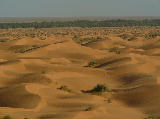 Kebili, Τυνησία: le dune prospicenti