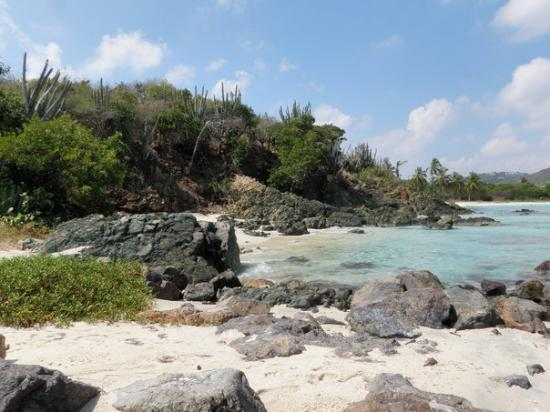 Water Island Adventures: Cove in St Thomas where we snuba'd