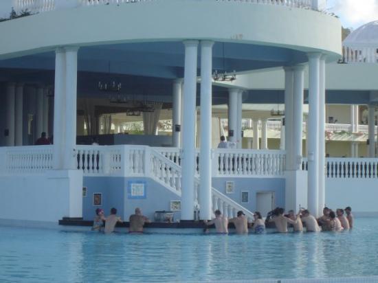 Le bar dans la piscine tous les jours 14 hrs 30 tous for Bar dans une piscine