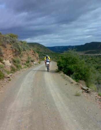 Calitzdorp, South Africa: The guy that chased me the whole way on day 2.