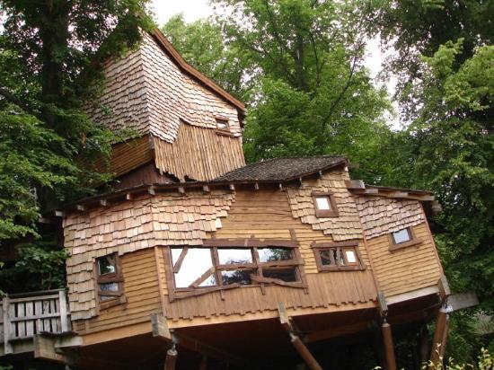 Алнвик, UK: A Treehouse near Alnwick Castle and Gardens 27th July 08