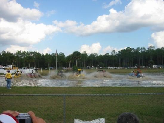 Swamp Buggy Races: jeep races