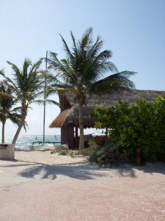Barcelo Maya Palace : Activities Center area - snorkeling, kayaking, catamaran, parasailing and jetski's