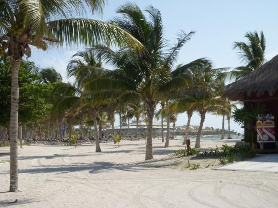 Barcelo Maya Palace: North of the Activities Center - Beach view of the Palace