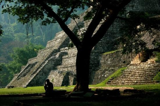 Palenque Εικόνα