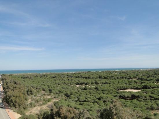 Guardamar del Segura, Spanien: La Pinada- Guardamar