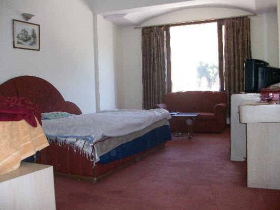 Nagesh Hotel: Room pic