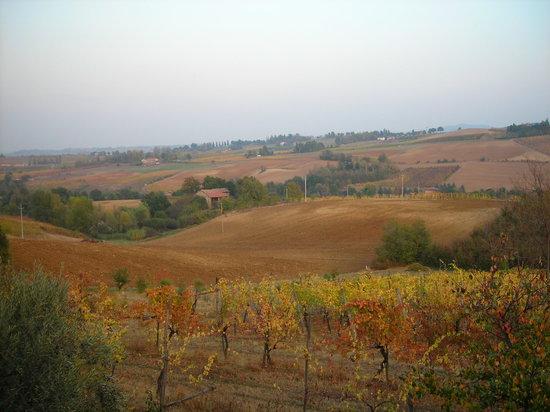 Savignano sul Panaro, Ιταλία: panorama dal terrazzo