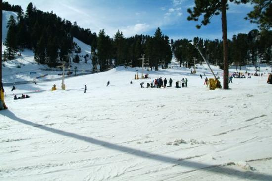 Wrightwood Photo