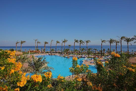 Ecotel Dahab Bay View Resort: Pool