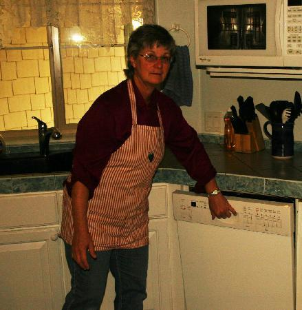 Lucinda's Country Inn: Lucinda's wearing an apron made by one of our guests.
