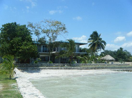 Almond Tree Hotel Resort: taken from the end of the pier