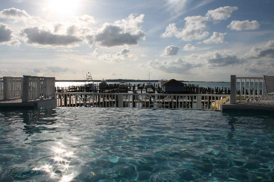 Romora Bay Resort & Marina: infinity pool