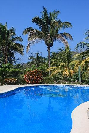 Mal Pais Surf Camp & Resort: The pool