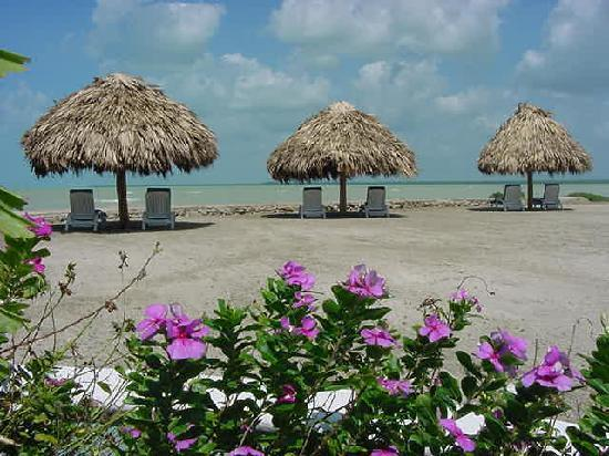 Corozal Town, Belize: Beach area with five palapas for relaxing.
