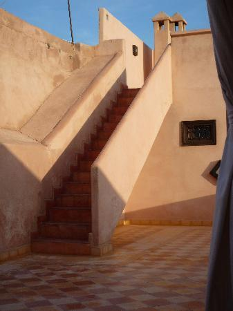 Riad l'Oiseau du Paradis: Roof terraces