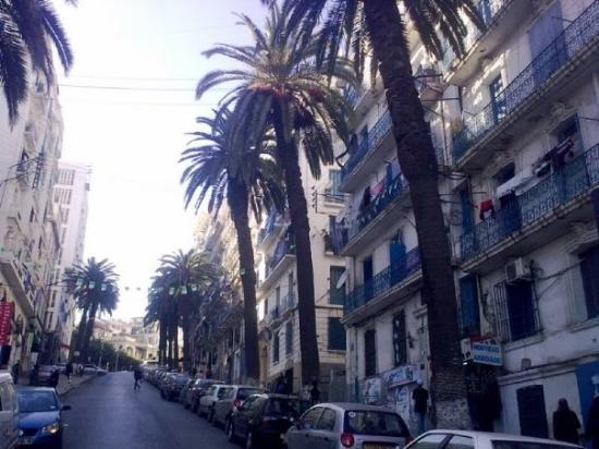 Imagen de Alger