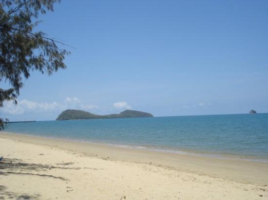Palm Cove, Australia: nonostante le spiagge del queensland siano favolose d'estate non si può fare il bagno causa medu