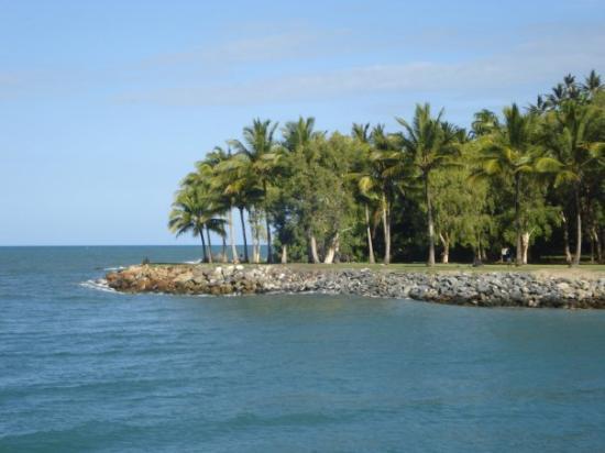Port Douglas-bild