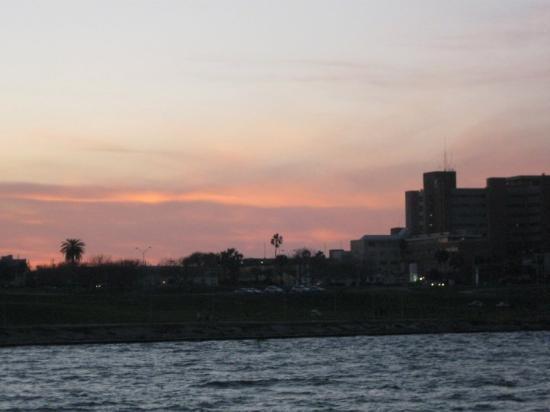 Bilde fra Corpus Christi