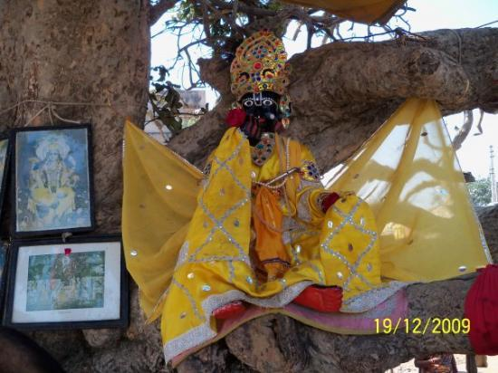 Vrindavan, India: An Idol of Krishna beneath the tree where he hid the clothes of the Gopi bathing in Yamuna