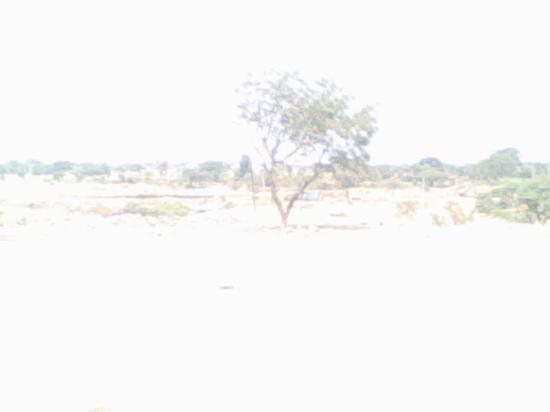 Shirdi Picture