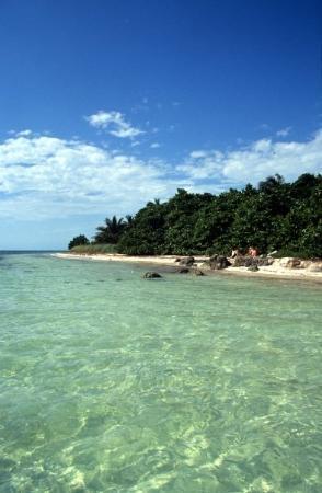 Marathon, FL: Bahia Honda State Park - Keys