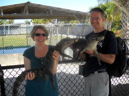 Southwest Florida EcoTours: Holding baby alligators