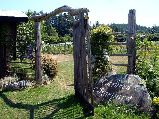 Carbrea Winery: Vineyard entrance