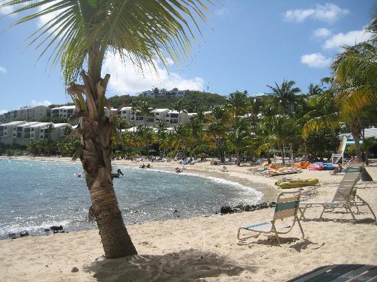 Elysian Beach Resort: beach