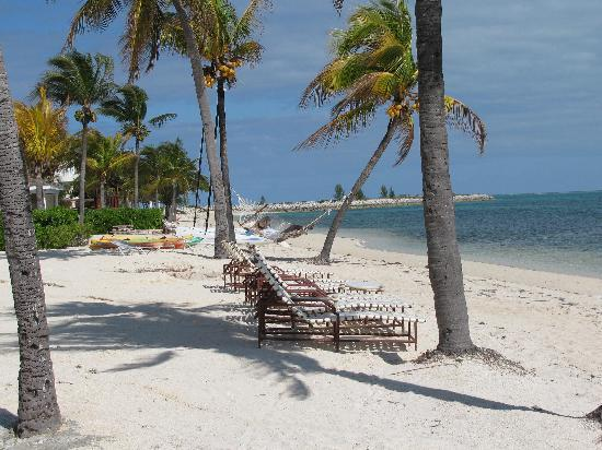 Old Bahama Bay: Awesome empty beaches!