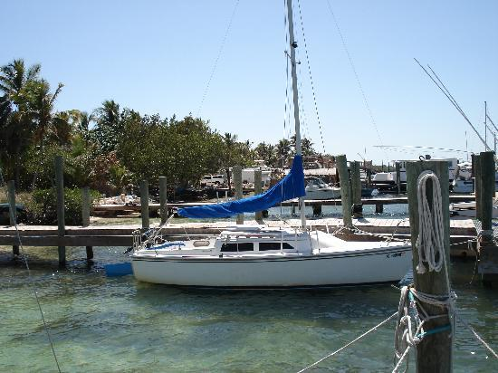 One Of Many Sailboats Picture Of Key Lime Sailing Club